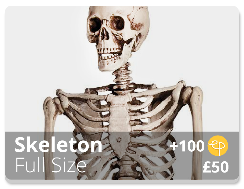 Halloween Skeleton Decoration